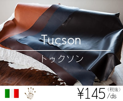 トゥクソン(旧アルノ)(イタリア・ITALPEL社)
